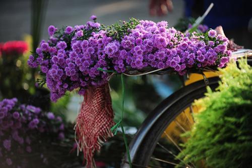 ban hoa