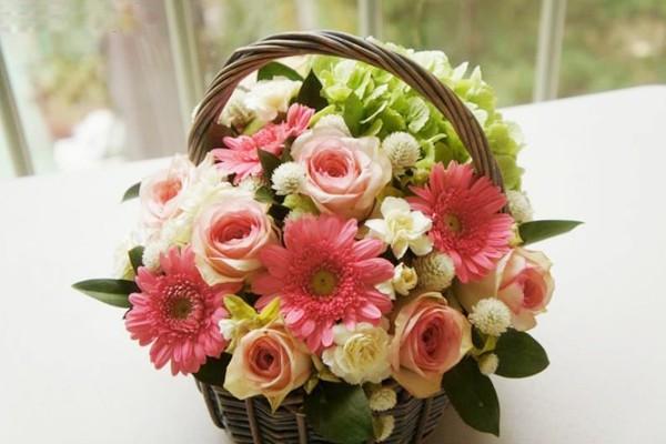 hoa dep la
