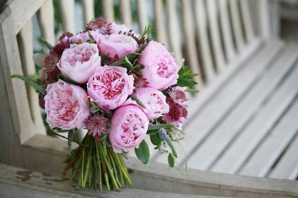 hoa xinh